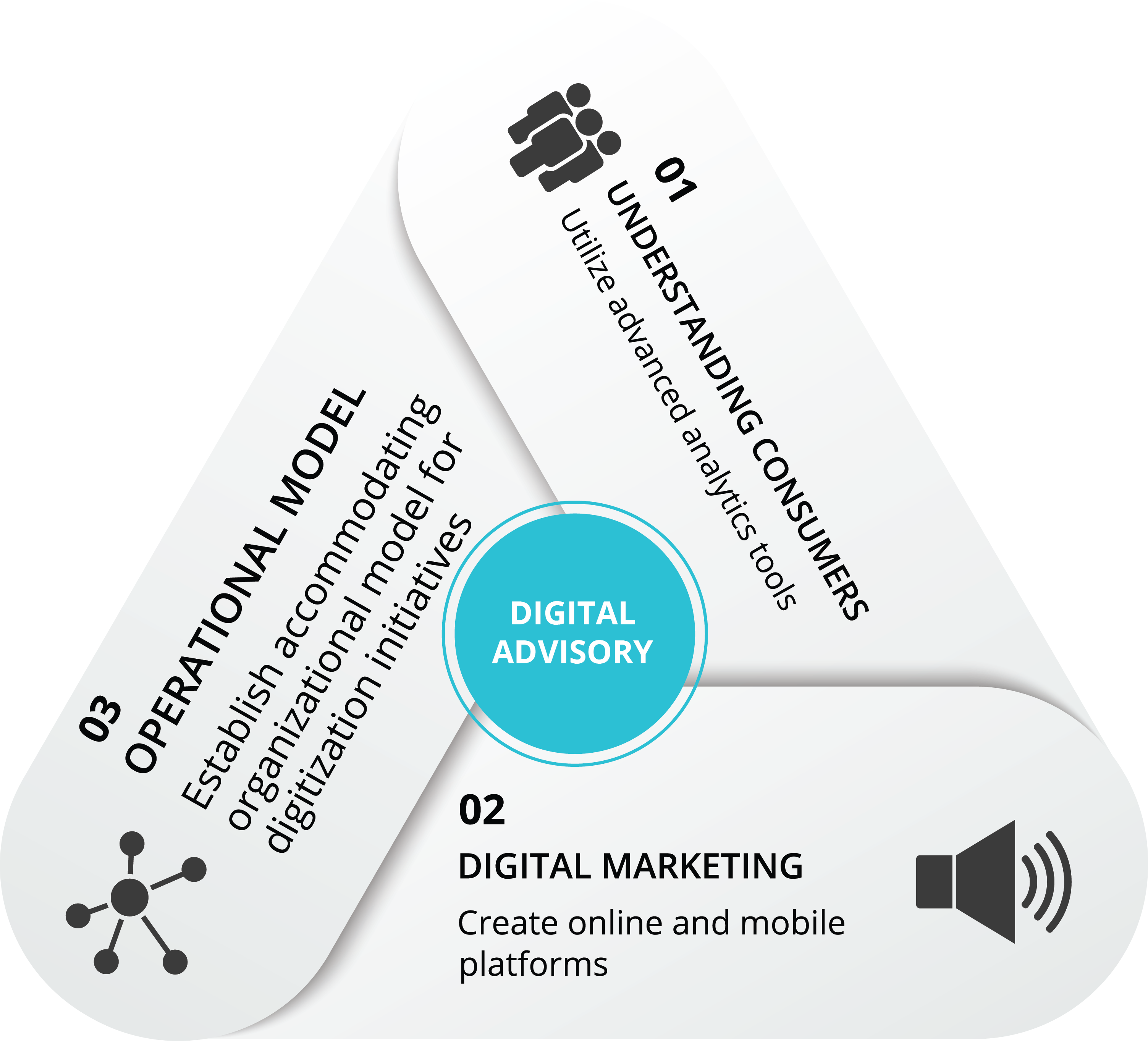 Digital Advisory Segments